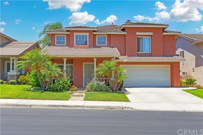 Chino Hills Single Family Home For Sale: 16334 Star Crest Drive