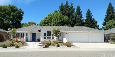 Chico Single Family Home For Sale: 3143 Hidden Creek Drive