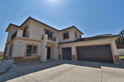 Walnut Single Family Home For Sale: 486 Avenida Esplendor