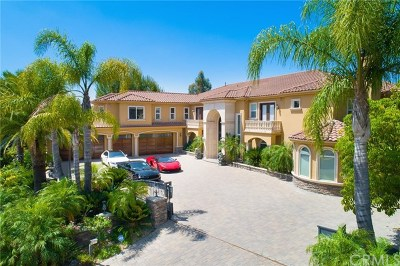 Diamond Bar Single Family Home For Sale: 3067 Windmill Drive
