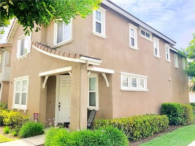 Chino Single Family Home For Sale: 7041 Piedmont Street