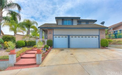 Chino Hills Single Family Home For Sale: 2457 Canyon View Drive