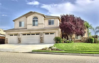 Yucaipa Single Family Home For Sale: 36335 Canyon Terrace Drive