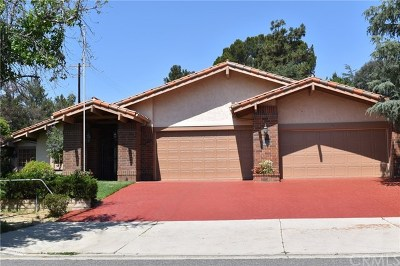 Chatsworth Single Family Home For Sale: 9505 Shoup Avenue