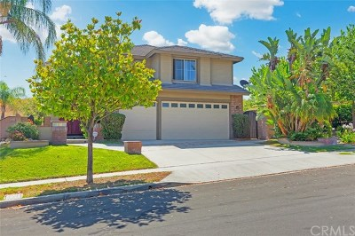 Chino Hills Single Family Home For Sale: 17385 Eastview Drive