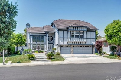 Yorba Linda Single Family Home For Sale: 20321 Via Celestina