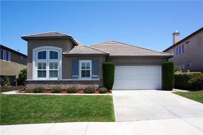 Riverside Single Family Home For Sale: 16118 Skyridge Drive