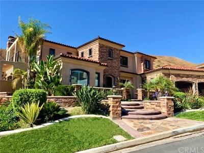 Yorba Linda Single Family Home For Sale: 22415 Rolling Hills Lane