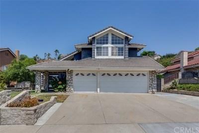 Walnut Single Family Home For Sale: 21243 Stockton Pass Road