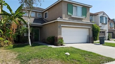 Chino Hills Single Family Home For Sale: 5433 Amethyst Lane