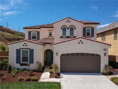 Chino Hills Single Family Home For Sale: 17004 Viana Drive