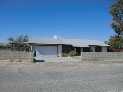 Palmdale Single Family Home For Sale: 16115 Coolwater Avenue
