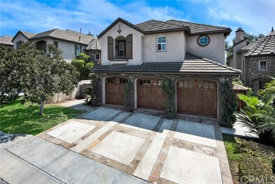 Placentia Single Family Home For Sale: 1066 Underhill Drive