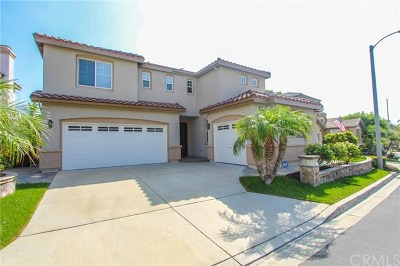 Placentia Single Family Home For Sale: 925 Pebble Beach Place