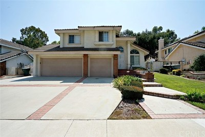 Chino Hills Single Family Home For Sale: 15237 Green Valley Drive