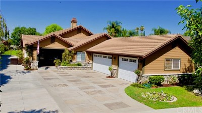 Chino Single Family Home For Sale: 12770 Wright Avenue