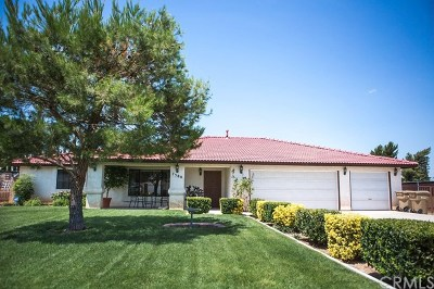 Hesperia Single Family Home For Sale: 7588 Newhall Avenue