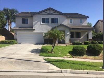 Corona Single Family Home For Sale: 717 Brianna Way