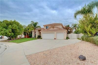 Hemet, San Jacinto Single Family Home For Sale: 942 Sarazen Street