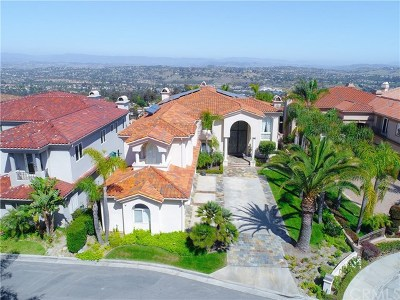 Laguna Niguel Single Family Home For Sale: 6 Vista Montemar