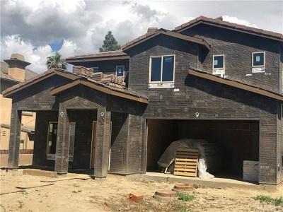 Corona Single Family Home For Sale: 20100 Case Street