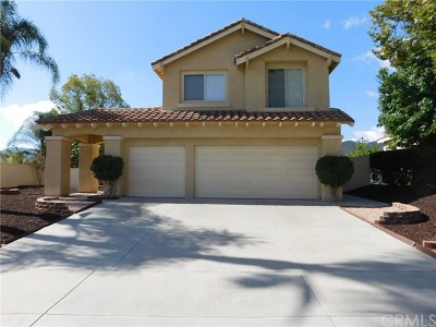 Temecula Single Family Home For Sale: 28299 Tierra Vista Road