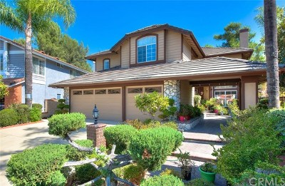 Chino Hills Single Family Home For Sale: 13909 Ravenwood Drive