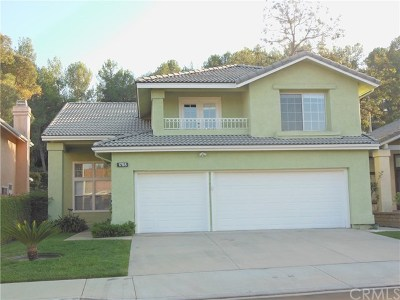 Chino Hills Single Family Home For Sale: 1785 Walnut Creek Drive