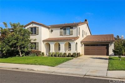 Eastvale Single Family Home For Sale: 8366 Fall Creek Drive