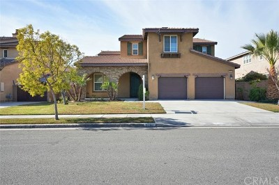 Eastvale Single Family Home For Sale: 6747 Black Forest Drive