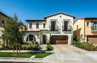 Orange County Single Family Home For Sale: 48 Saddlehorn