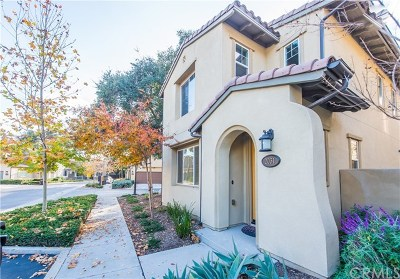 La Verne Single Family Home For Sale: 2031 Canopy Lane