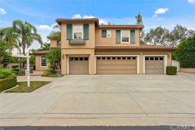 Chino Hills Single Family Home For Sale: 15261 Maysair Lane