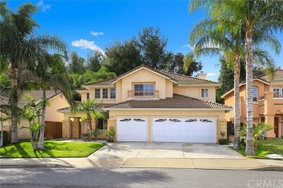 Chino Hills Single Family Home For Sale: 16376 Brancusi Lane