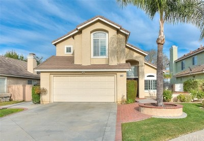 Chino Hills Single Family Home For Sale: 15071 Camino Arroyo