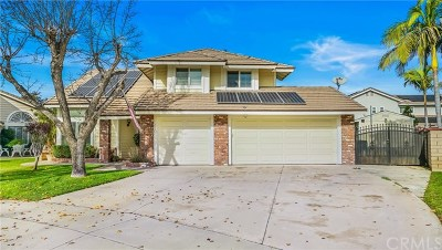 Chino Single Family Home For Sale: 6510 Alfonso Court