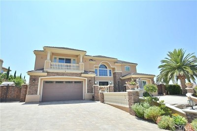 Yorba Linda Single Family Home For Sale: 20396 Umbria Way