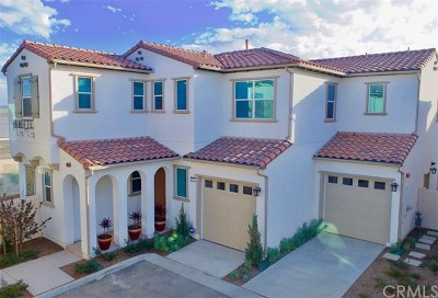 Chino Hills Single Family Home For Sale: 15821 Ellington Way