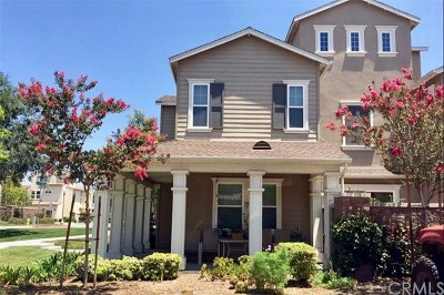 Chino Single Family Home For Sale: 8517 Candlewood Street