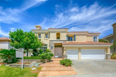 Rowland Heights Single Family Home For Sale: 19139 Hastings Street