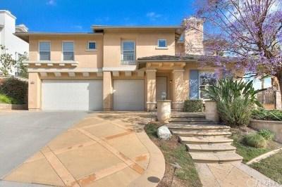 Diamond Bar Single Family Home For Sale: 630 Skyline Dr