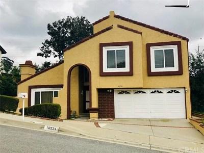 Hacienda Heights Single Family Home For Sale: 16234 Elza Drive