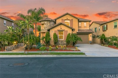 Chino Hills Single Family Home For Sale: 3956 Golden Terrace Lane