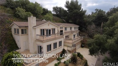 Chino Hills Single Family Home For Sale: 16309 Observation Lane