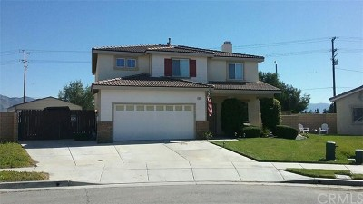 Hemet Single Family Home For Sale: 2512 Wallace Court