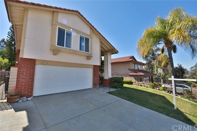 Walnut Single Family Home For Sale: 1147 Moscada Avenue