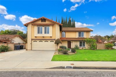 Rowland Heights Single Family Home For Sale: 17700 Calle Barcelona