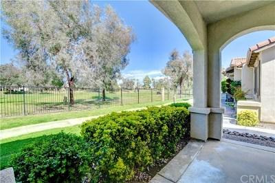 Hemet Single Family Home For Sale: 8140 Bay Hill Avenue