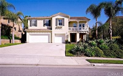 Brea Single Family Home For Sale: 360 Brea Hills Avenue