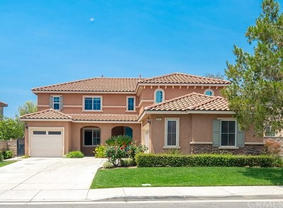 Eastvale Single Family Home For Sale: 6951 Wild Lupine Road